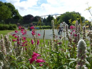 Perennial beds by the children's playground